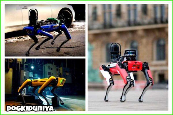 NYPD robot dog - dogkiduniya