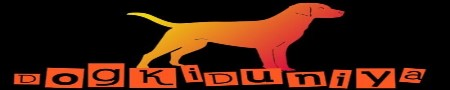 Get Dog News in Hindi, Dog breeds, Pitbull, Rajapalayam dog: DogKiduniya.Com